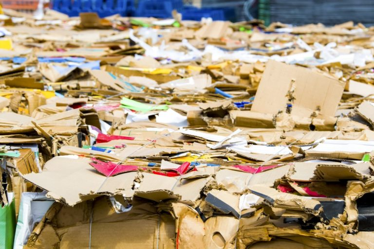 Sea of paper waste