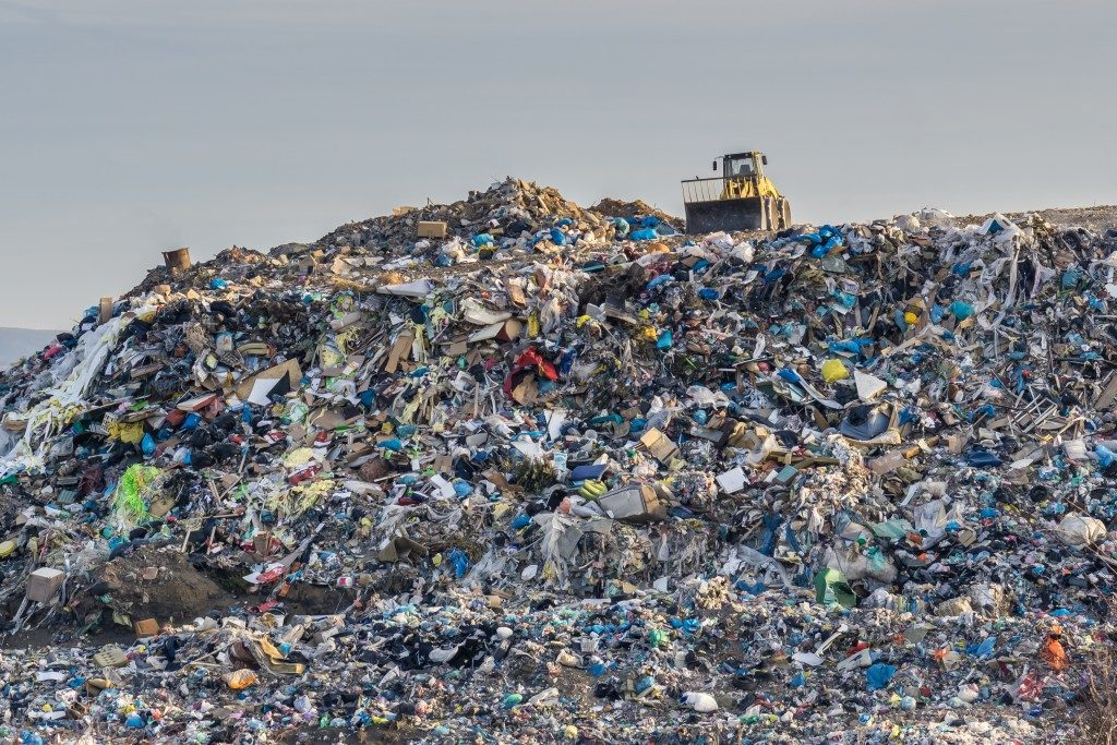 garbage pile in a landfill
