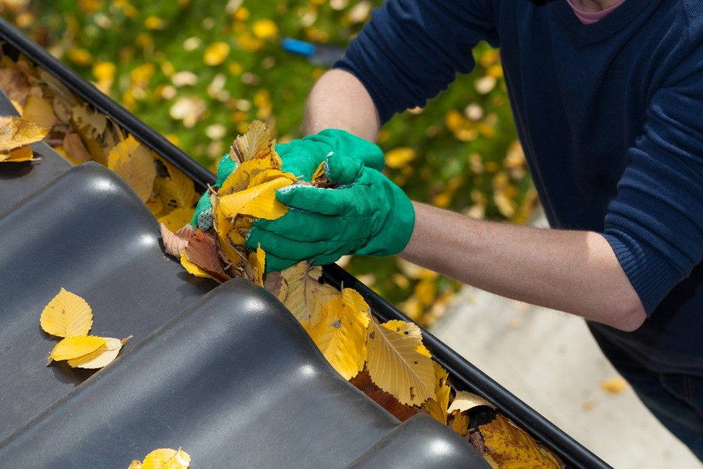 man removing leaves from the gutter